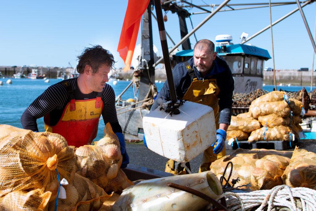 Laurent et Eddy débarquen les sacs de coquilles Saint Jacques pour qu'elles soient vendues par la criée du port d'Erquy le lundi 12 avril 2021, lors de la dernière pêche de la saison.